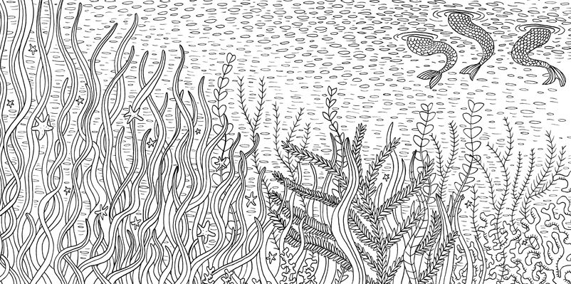 Under the sea black and white drawing, livre à colorier Merveille sous les Mers, dessins Aurélie Castex 6