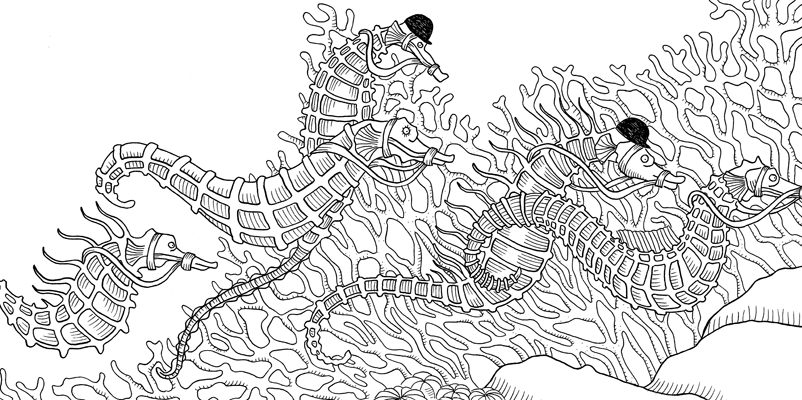 Under the sea black and white drawing, livre à colorier Merveille sous les Mers, dessins Aurélie Castex 7