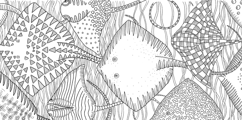 Under the sea black and white drawing, livre à colorier Merveille sous les Mers, dessins Aurélie Castex 14