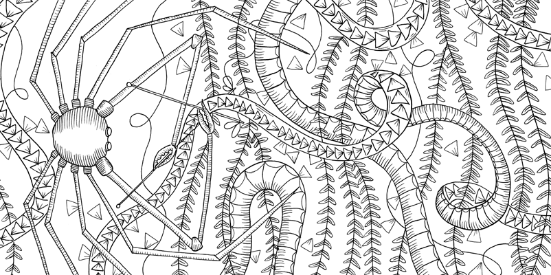 Under the sea black and white drawing, livre à colorier Merveille sous les Mers, dessins Aurélie Castex 20