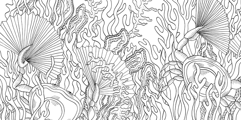 Under the sea black and white drawing, livre à colorier Merveille sous les Mers, dessins Aurélie Castex 29